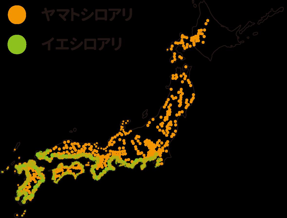 シロアリの分布図